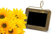 Bright yellow flowers with empty blackboard — Stock Photo