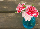 Bunch of bright carnations — Stock Photo