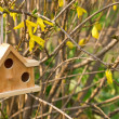 Wooden nesting box on garden background — Stock Photo