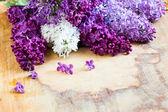 Färska lilak på träbord — Stockfoto