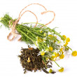 Stock Photo: Dry herbal tea and camomile.