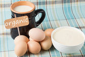 Dairy products - milk, sour cream, eggs.Tag with word organic. — Stock Photo