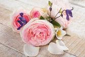 Elegantní květiny — Stock fotografie