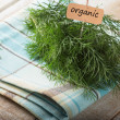 Fresh organic fennel and tag with word organic — Stock Photo