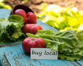 Fresh organic lettuce and tomatoes. Tag with words buy local. — Stock Photo