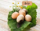 Fresh organic eggs on leaf. Tag with word bio. — Stock Photo