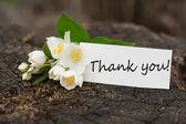 Kartpostal zarif çiçek ve etiket — Stok fotoğraf