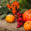 Fall decoration — Stock Photo