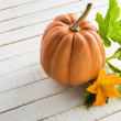 Fresh pumpkin with leaves — Stock Photo