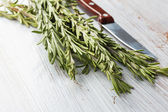 Fresh organic rosemary — Stock Photo