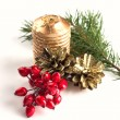 Winter berries, pine cones, candle, spruce on white — Stock Photo