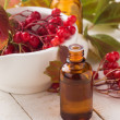 Viburnum and bottle with medicines. Concept homeopathy. — Stock Photo #34215521