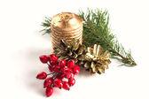 Winter Beeren, Tannenzapfen, Kerze, Fichte auf weiß — Stockfoto
