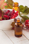 Viburnum and bottle with medicines. Concept homeopathy. — Stock Photo