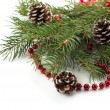 Spruce with decorations — Stock Photo