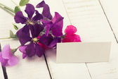 Postcard with elegant flowers and empty tag for your text — Photo