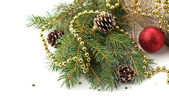 Spruce with decorations — Stok fotoğraf