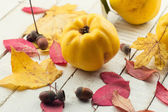 Marmelos frescos — Foto Stock