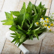 Fresh green melissa, mint, chamomile — Stock Photo #35613981