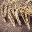 Ears of wheat — Stock Photo #35646329