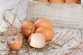 Ovos frescos de galinha — Foto Stock