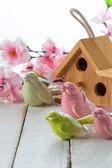 Little bird house and spring flowers — Stock fotografie