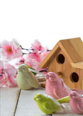 Little bird house and spring flowers — Stock Photo