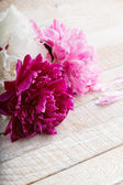 Postcard with elegant peony flowers — ストック写真