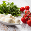 Mozzarella cheese and tomato — Stock Photo