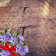 Flowers background with ribbon — Stock Photo