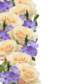 Postkarte mit eleganten blumen — Stockfoto