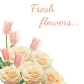 Postcard with fresh flowers roses and tulips — Stock Photo