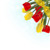 Postcard with fresh flowers tulips — Foto de Stock