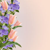 Flowers border on pink background — Stockfoto