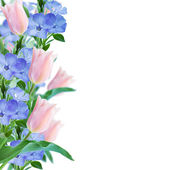 Flowers border on pink background — Foto de Stock