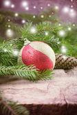 Dekoratif Noel kompozisyon — Stok fotoğraf