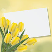 Postcard with fresh flowers tulips — Stock fotografie