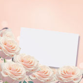 Border from fresh roses — Stockfoto