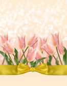 Postcard with fresh flowers tulips — Stock Photo
