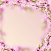 Fresh almond flowers on pink background. — Foto de Stock