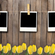 Fhoto frames on clothesline on fence with tulips — Stock Photo
