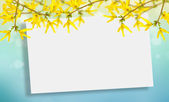 Postcard with forsythia flowers — Stockfoto