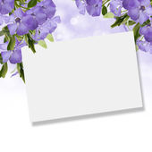 Postcard with periwinkle flowers — Stock Photo