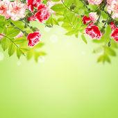 Postal com flores — Foto Stock