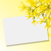 Postcard with flowers — Foto Stock