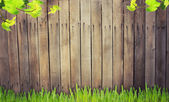 Grass against wooden background — Stock Photo