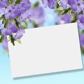 Postcard with elegant periwinkle — Stock Photo