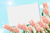 Postcard with elegant tulips — Stock Photo