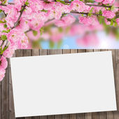 Postcard with flowering tree — Stock Photo