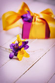 Fresh crocuses and gift box — Stock Photo